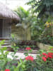 Casa De Las Rosas for sale in Sayulia Mexico