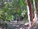 Large Lot Behind Punta Burros for sale in Sayulia Mexico