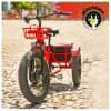 ElecTrike Business Model & E-Trike Sale Opportunity for sale in Sayulia Mexico