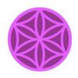 NeuCogni icon