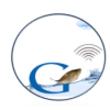 GINTEL TECH INC. icon