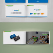 Brand book example.