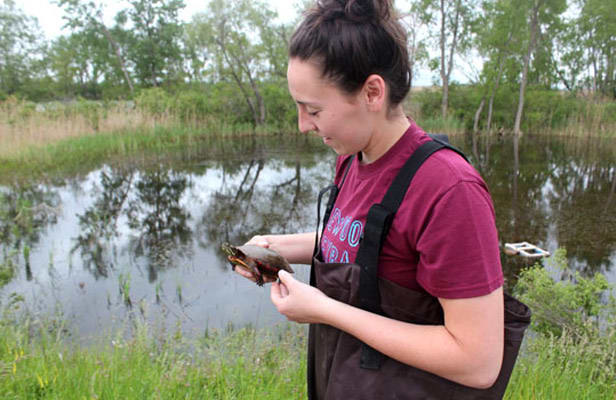 Student holding turtle above a body of water