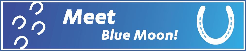Meet Blue Moon!