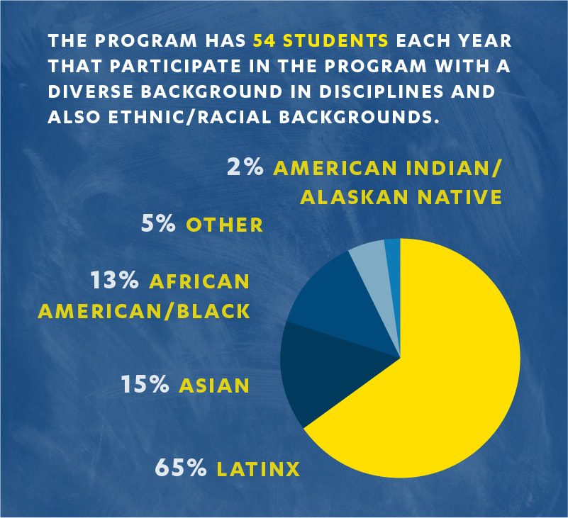 Graphic depicting number of students and ethnic/racial background