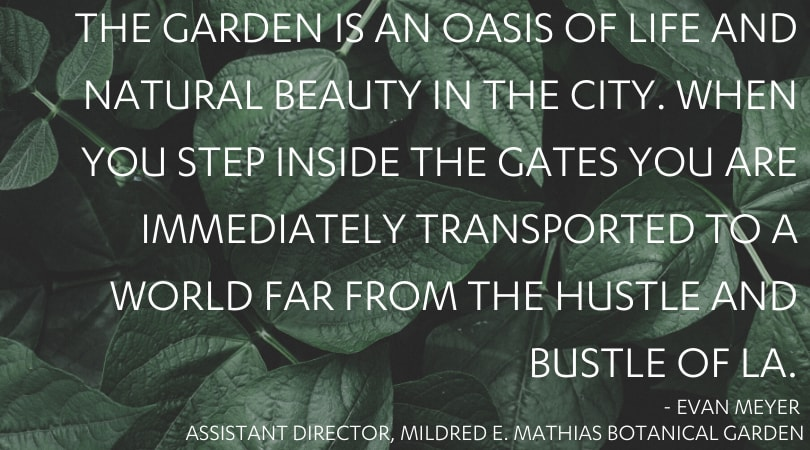 The Garden is an oasis of life and natural beauty in the city. When you step inside the gates you are immediately transported to a world far from the hustle and bustle of LA.