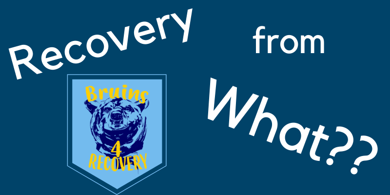 Recovery From What?!