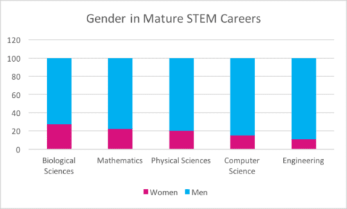 Chart of Disparities in STEM