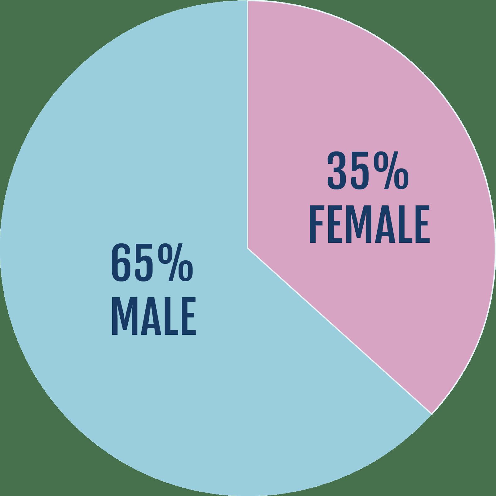 gender-pie.png