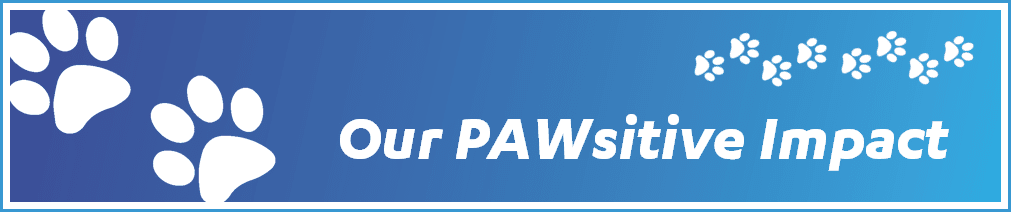 Our PAWsitive Impact