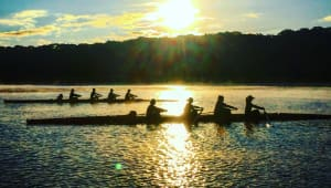 Support SHU Rowing!