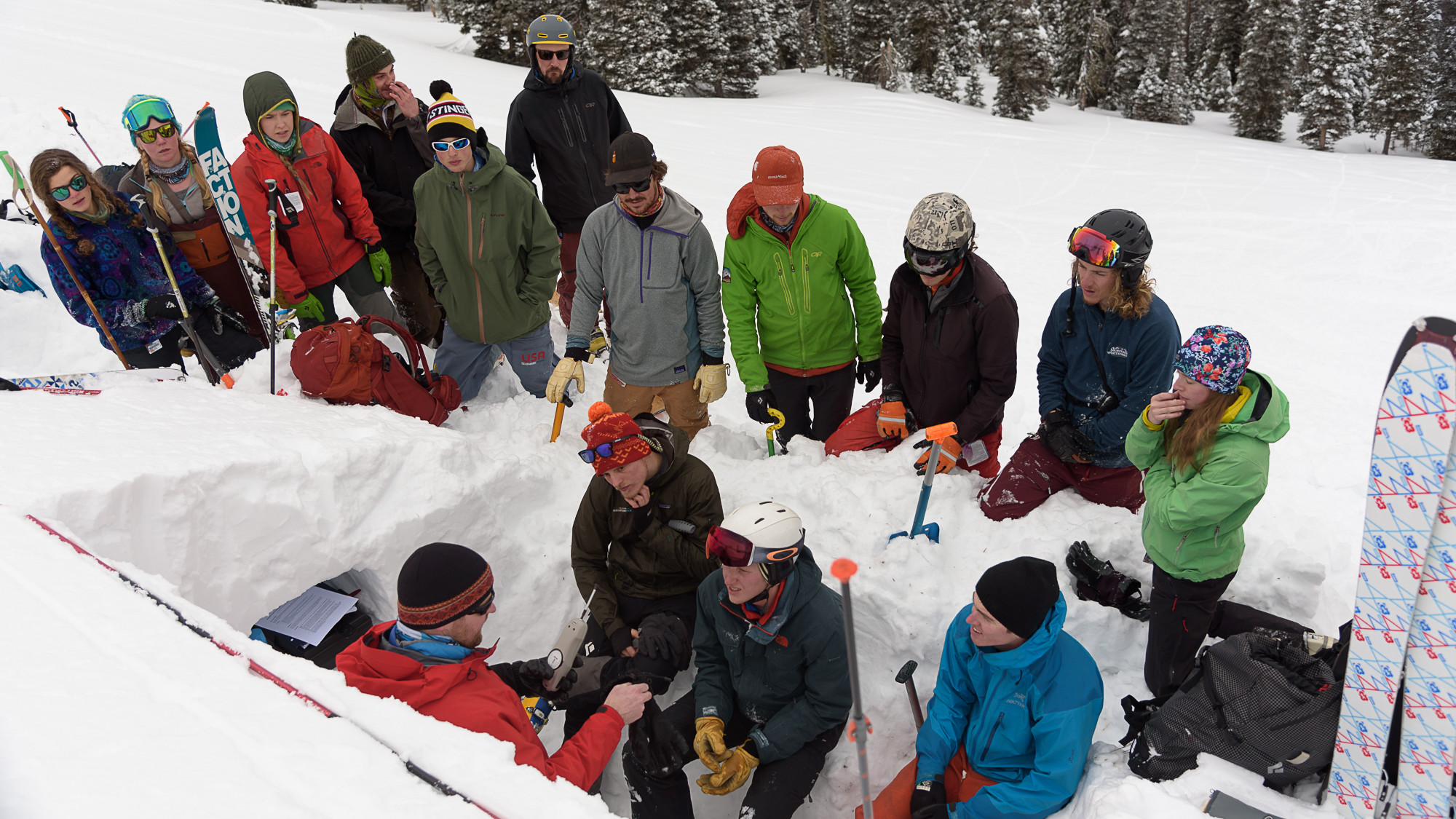 Snow Science in the Field