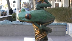 A Frog for The Department of Biology (Art … Spirit … Science)