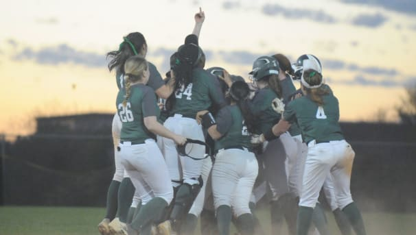 Babson Softball Image