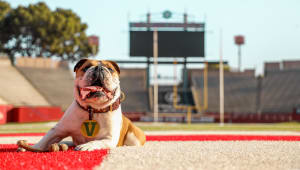 Mascot Mania: Support Victor E. Bulldog III