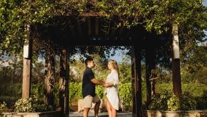 Ledezma Wedding: CHKD Donations