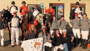 Shelters for OSU Horses