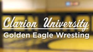 Golden Eagle $99 or More Scholarship 2018