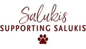 Saluki Cares Student Emergency Fund
