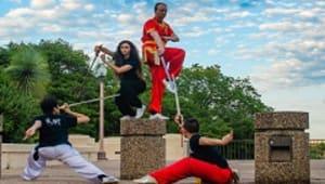 Texas Wushu