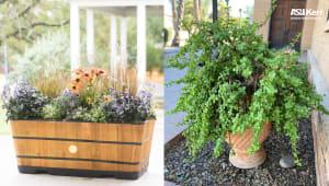ASU Kerr Garden Boundary Fund
