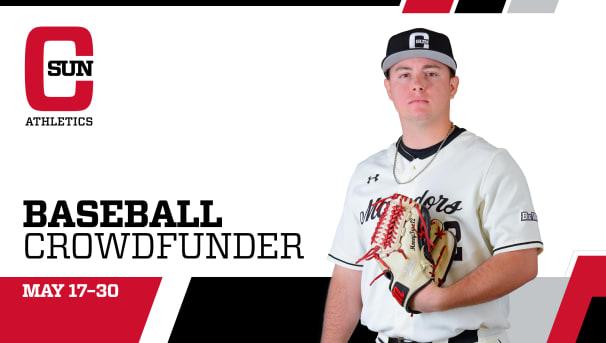 Baseball Crowdfunder Image