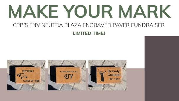 ENV Neutra Plaza Image