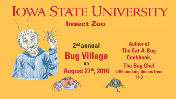 Insect Zoo's Eat-a-Bug experience Image