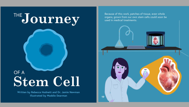The Journey of Stem Cells Image