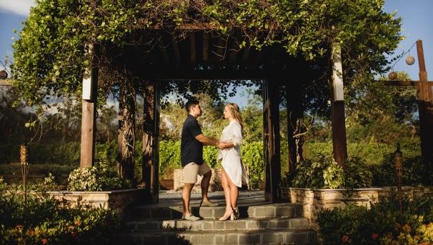 Ledezma Wedding: CHKD Donations Image