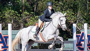 Equip Auburn's Equestrian Club