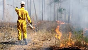 Safety Equipment for Forest Fire Management