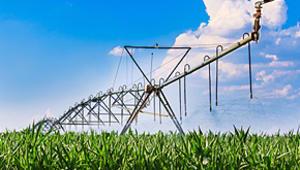 Cleaner Streams, Abundant Food, Efficient Farms
