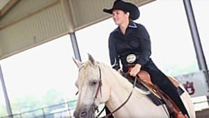 Equestrian Club Reining Horse