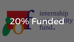 Heinz College Internship Opportunity Fund