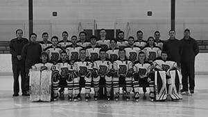 Ice Hockey 2020
