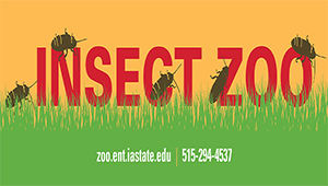 Insect Zoo: Love Our Bugs!