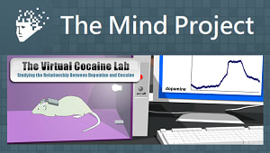 The Mind Project