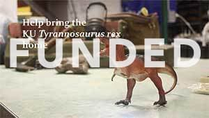 Bring the T. rex home to KU Natural History Museum