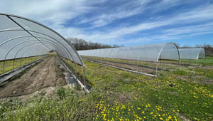 Bring a High Tunnel Greenhouse to KUMC