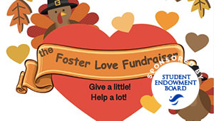 Foster Love Fundraiser