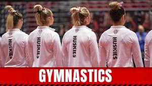 NIU Gymnastics