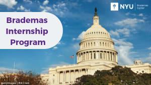 Brademas Internship Program