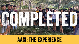 AASI: The Experience