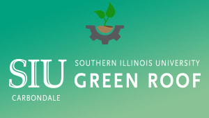 Green Roof Project