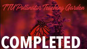 Native Plant and Pollinator Teaching Garden