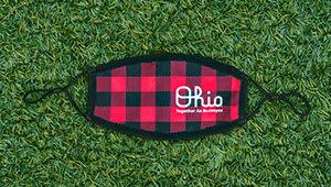 Script Ohio Mask