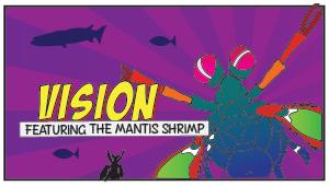 Team Mantis Shrimp