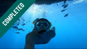 Help Sponsor Student Research with UNCW Plastic Ocean Project