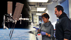 Get UMD Biofilms on the next Space-X